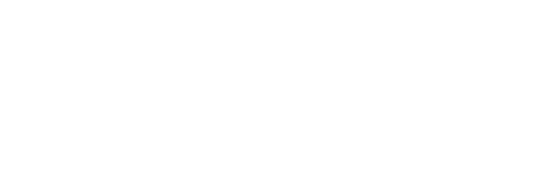 VFW Logo White